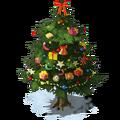 Christmas Plant Ripe