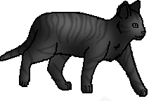 File:Tabby 5.png