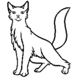 Leader Female Longhair