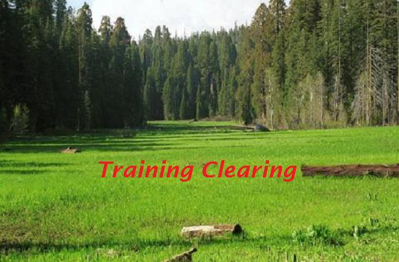 Trainingclearing