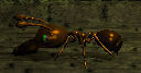 File:Solider Ant.PNG