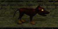 Hellhound pup