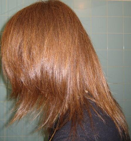 File:Auburn hair.jpg