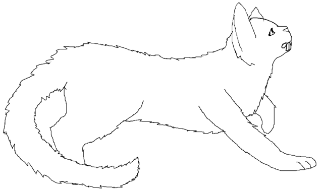 File:Long-haired female Medicine Cat blank.png