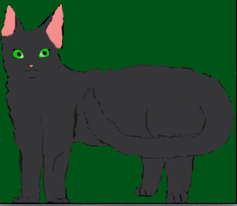 File:The third Wolfstar.jpg