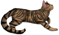 Thumbnail for version as of 16:11, November 27, 2015