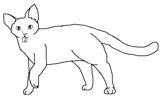 File:Short-haired male Medicne Cat blank.png
