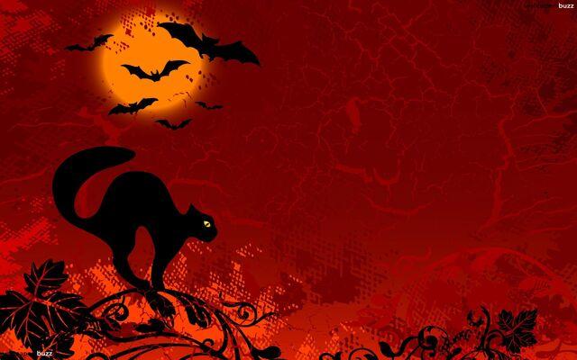 File:Black-Cat-Halloween-Wallpapers-2015-2.jpg