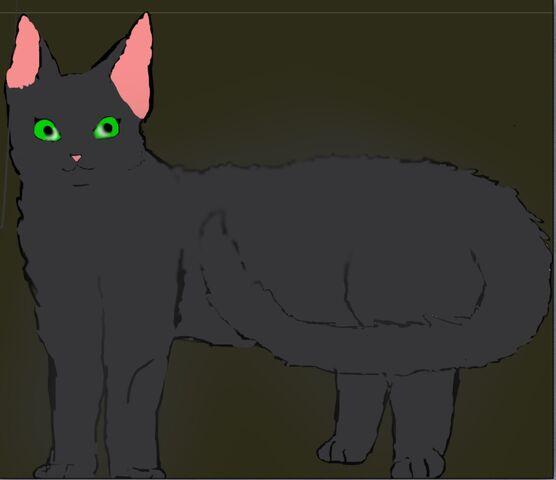 File:Wolfstar.jpg
