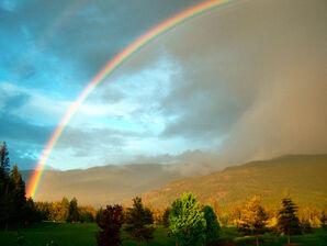 Rainbow by ookami kouu
