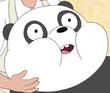 Swolen Panda
