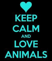 File:ANT Ava's Lpve Animals Poster.jpg