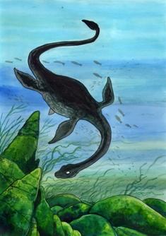 Datei:Plesiosaurus.jpg