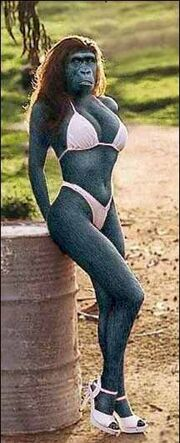 Monkey woman.jpg