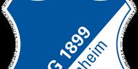 2013-14 TSG 1899 Hoffenheim Away
