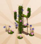 Cactus Swing