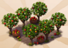 Appleseed's Orchard