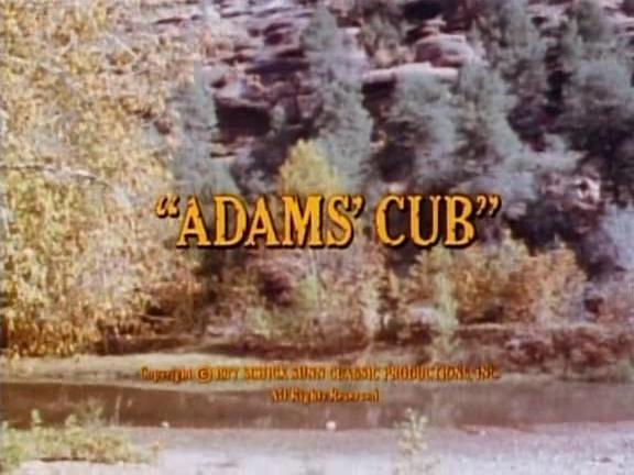 File:Adams' Cub.png