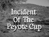 Incident of the Peyote Cup