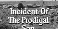 Incident of the Prodigal Son