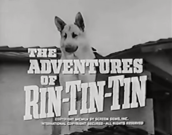 File:The Adventures of Rin-Tin-Tin.png