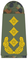 File:Army Lieutenant General.png