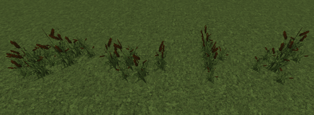 File:Cattails.png