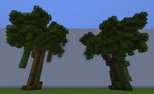 RainwoodXL