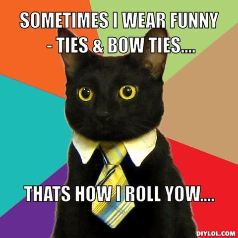 File:Resized business-cat-meme-generator-sometimes-i-wear-funny-ties-bow-ties-thats-how-i-roll-yow-36d2be.jpg