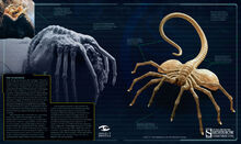 Alien The Weyland-Yutani Report5