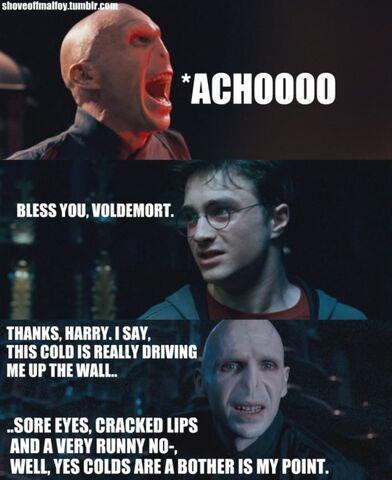 File:Bless You, Voldemort.jpg