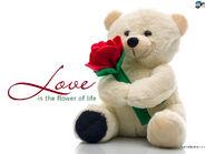 Love-180a