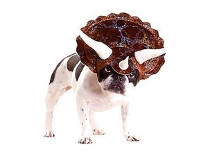 Dog-triceratops-costume