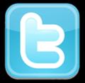 File:Logo-Twitter.png