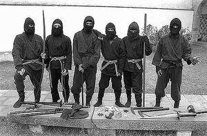 Ninjas 01