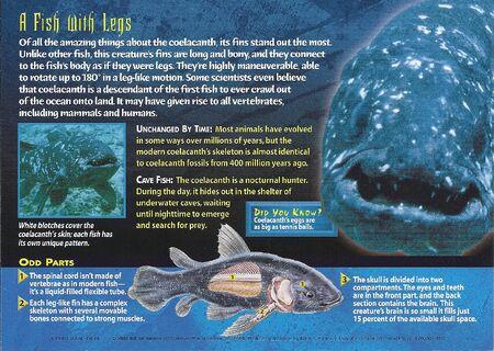 Coelacanth back