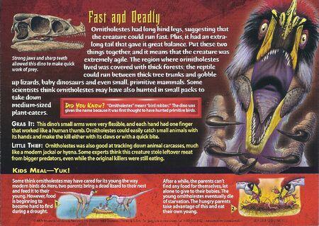 Ornitholestes back