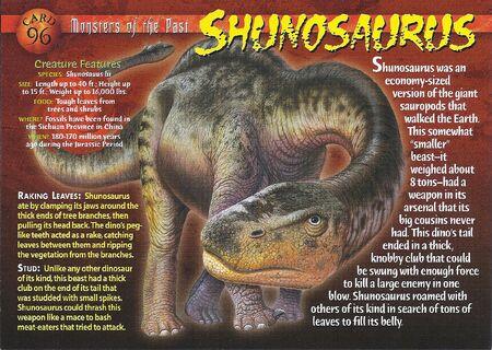 Shunosaurus front