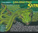 Long-Nosed Tree Snake