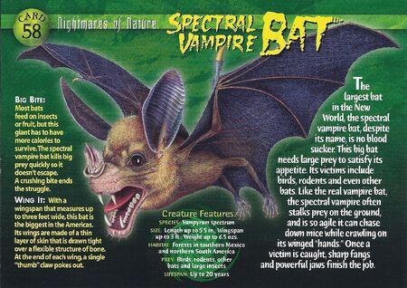 Spectral Vampire Bat front