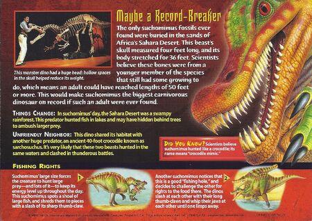 Suchomimus back