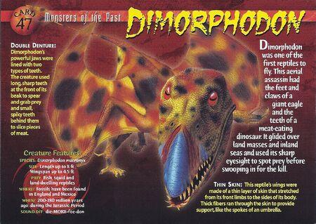Dimorphdon front
