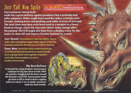 Styracosaurus back
