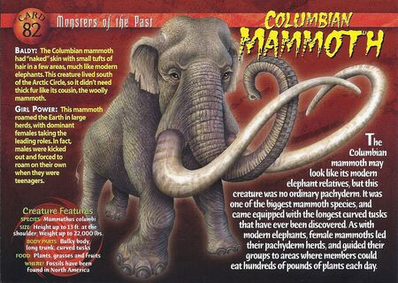 Columbian Mammoth front