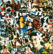 TheCockroachesAlbum-Collage
