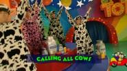 CallingAllCows3