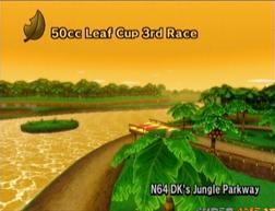 D.K.'s Jungle Parkway-1-