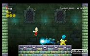 New-Super-Mario-Bros-Wii-26-1-