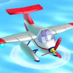 A plane seen in <a href=