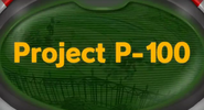 Project-p-100